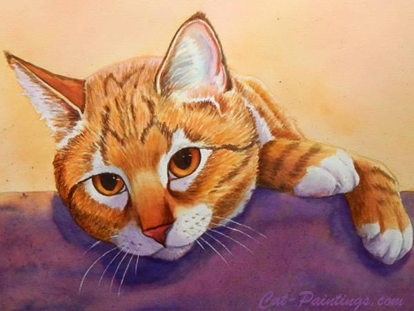 Tabby Cat Cat Paintings